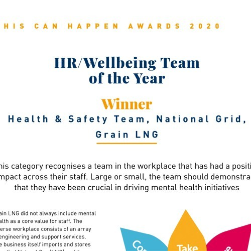 HR / Wellbeing Team of the Year photo