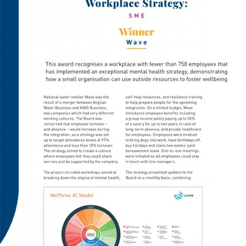 Best Mental Health in the Workplace Strategy: SME photo