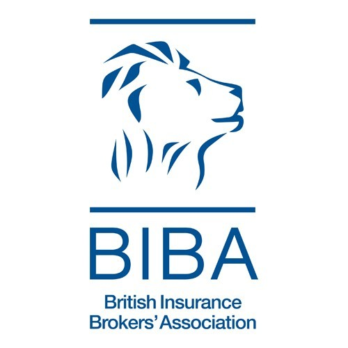 BIBA tackles mental health in their workplace through innovation and commitment photo